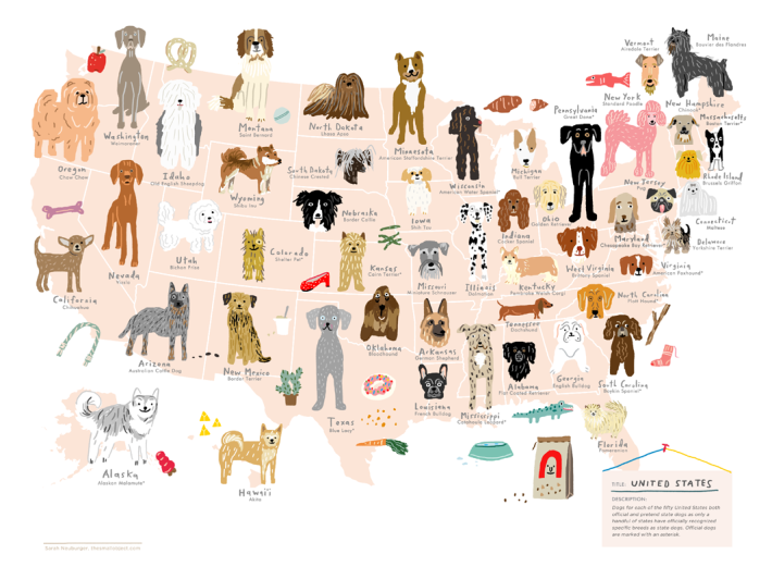 dogs of united states print illustration atlanta sarah neuburger the small object